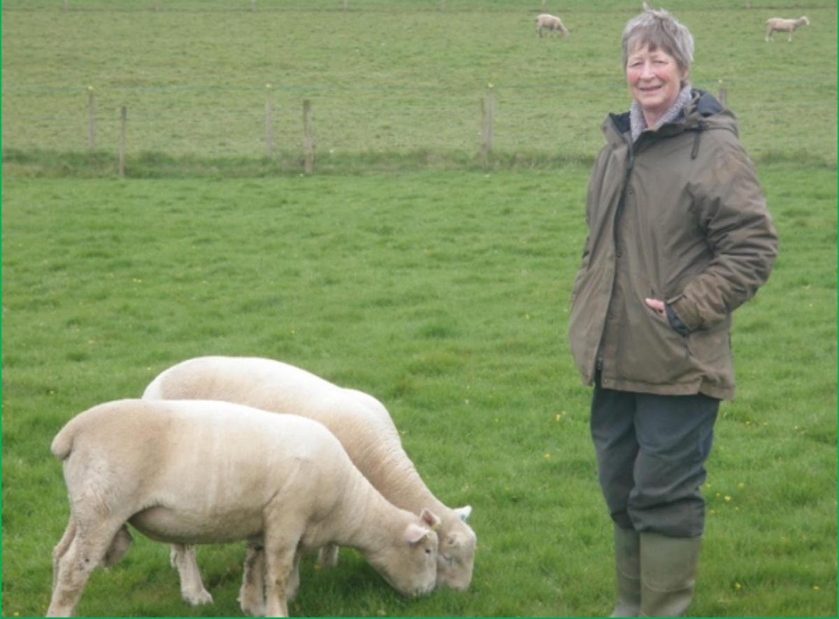 Susan with her two ram lambs that she took to the Sedgemoor Centurion Sale in April.