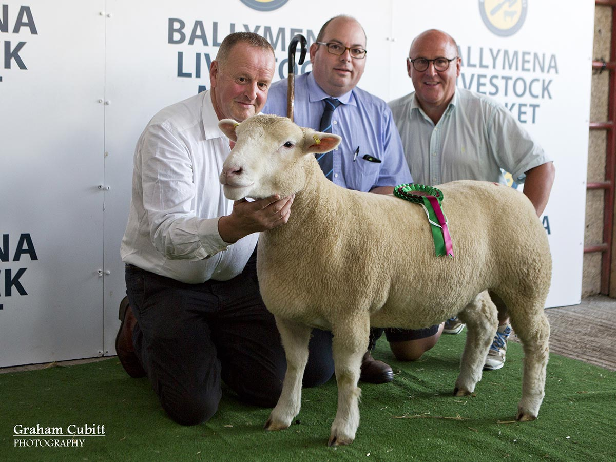 The Reserve Champion with from left David Hill, Gary Hanna, and Raymond Hill