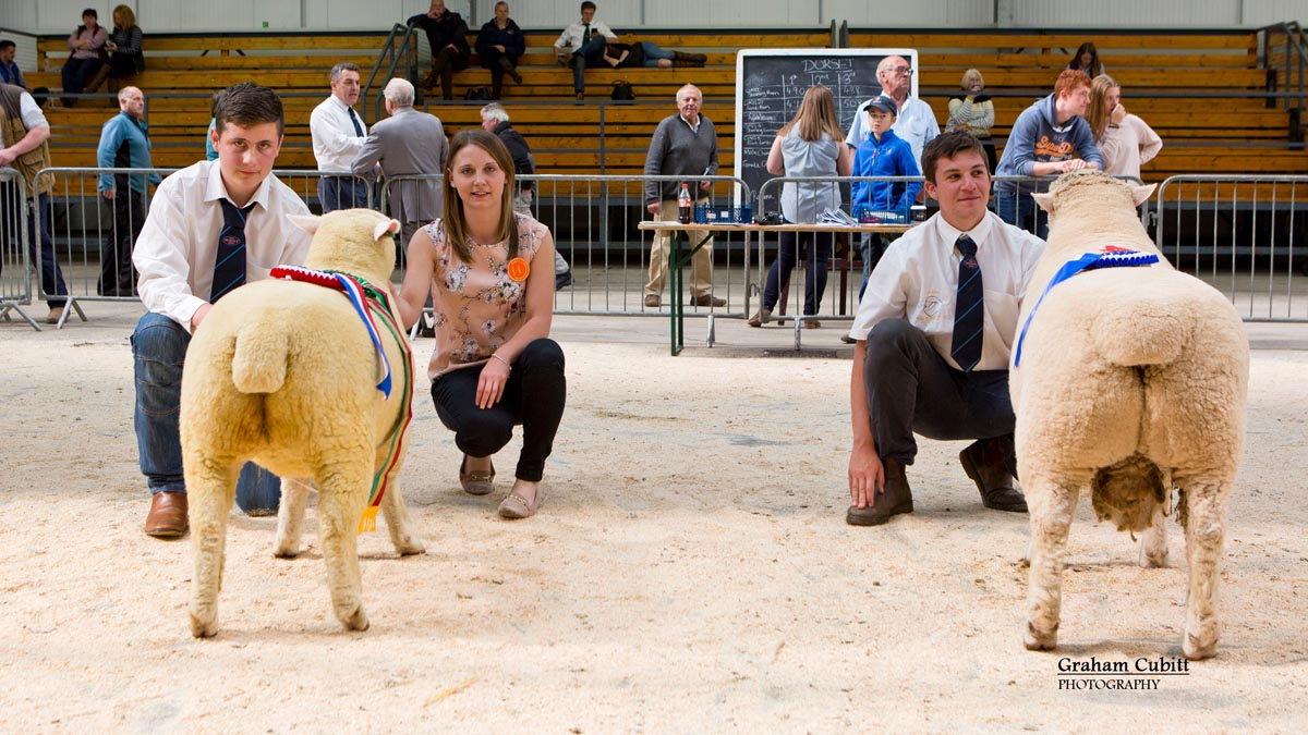 TJ Magee Supreme Champion (Kildowney Flock)  Sian Downes Judge and Richard Rossiter Reserve Champion (Huish Flock)