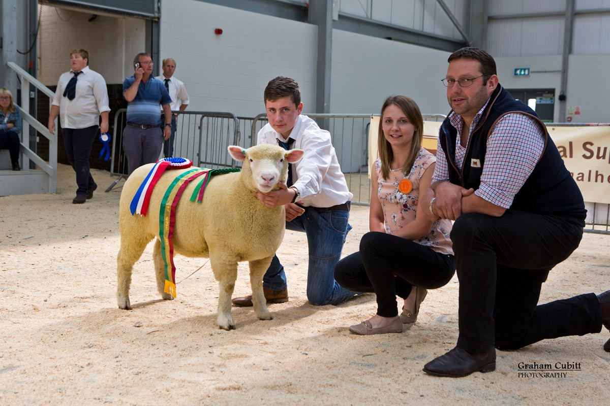 Supreme Champion (Kildowney Flock) along with TJ Magee, Sian Downes & sponsor JG Animal Health