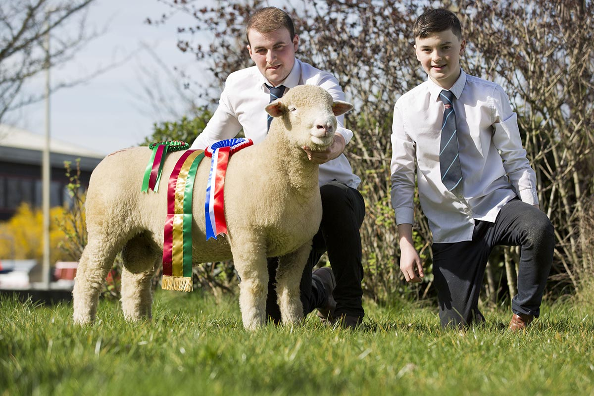 James Robson, left & Craig Robson, right with the Supreme Champion, Ballyhamage Braveheart