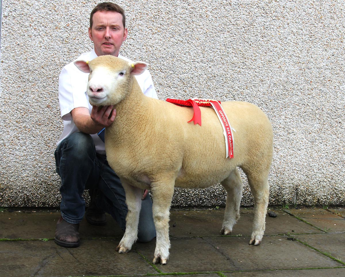 Richard Currie with top price ewe lamb