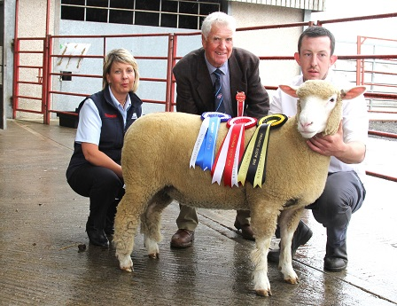 Reserve Champion & record price ewe lamb with breeder, Ben Lamb, Judge Alec Steff, & Jacqueline Hamilton, Norbrook
