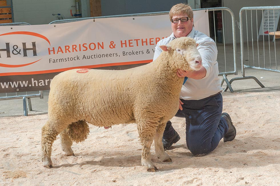 Carlisle - Champion Male 2015