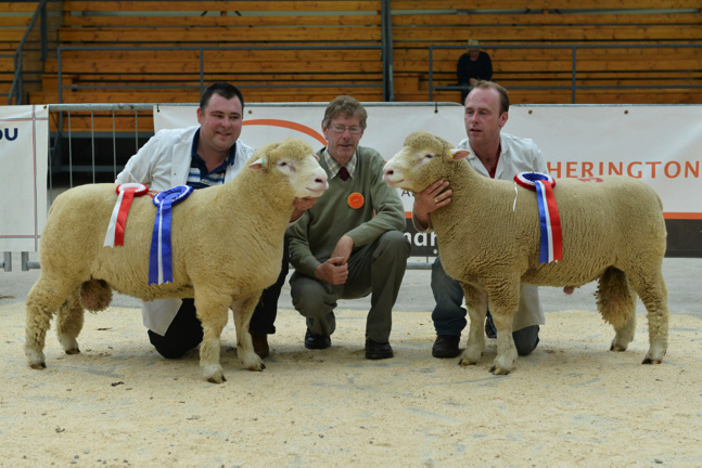 Thomas Wright (left) with Reserve Champion, Keith May (Centre), Judge, & William Carson (right) with Champion