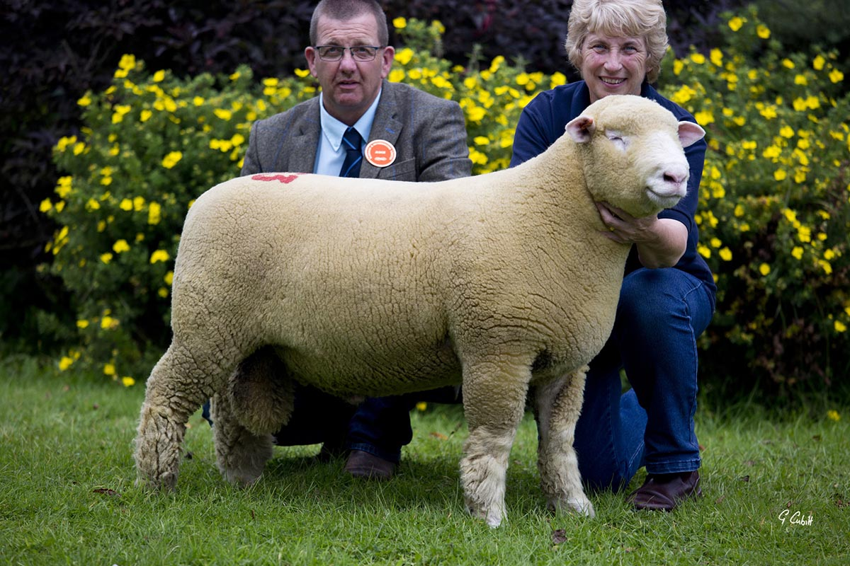 Judge, Geraint Jones, with Mary Cubitt and the Reserve Overall Champion