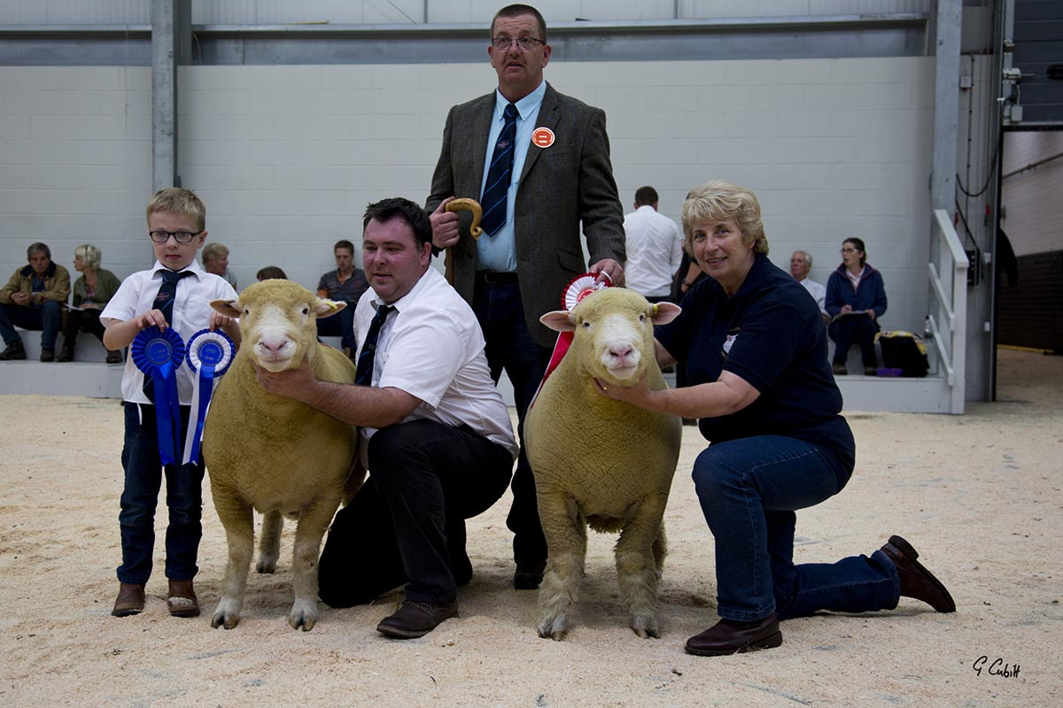 Thomas Wright & son, Sam, with the Reserve Male Champion, Judge, Geraint Jones, and Mary Cubitt with the Male Champion