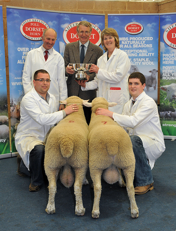 May Fair 2013 - Best Pair of Shearlings