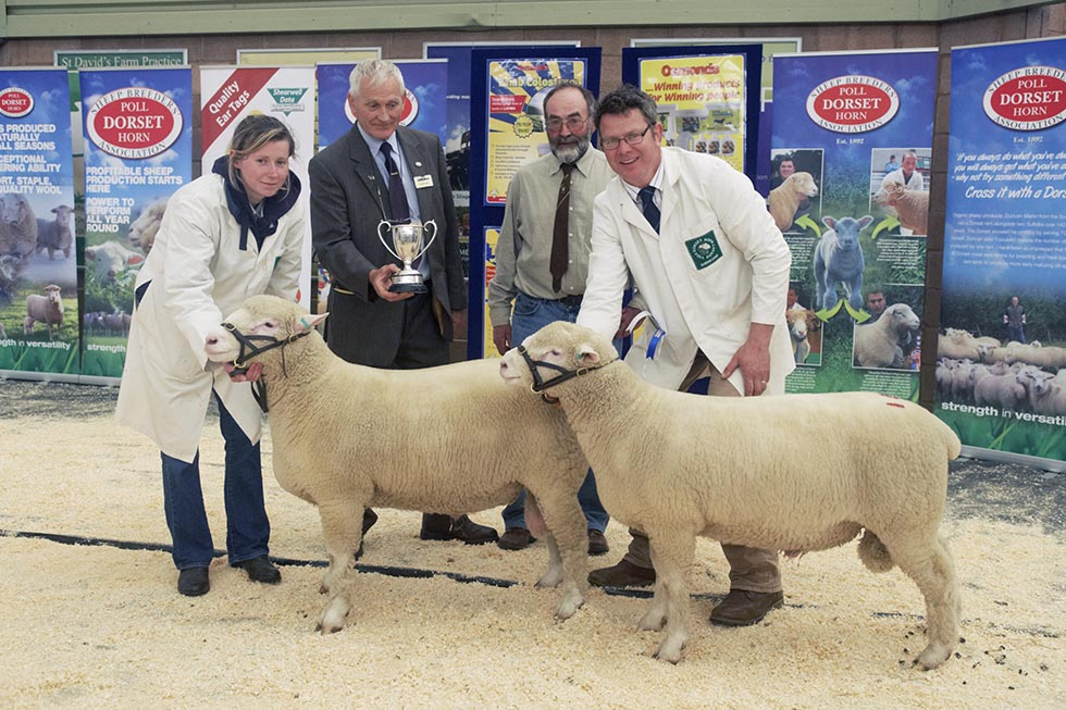 Reserve Champion Male Exhbit Robert & Annabel Hole with Sherborne Warfare, W2824 & Watermark, W2857,