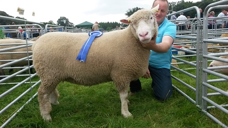 David Hill with Reserve Champion