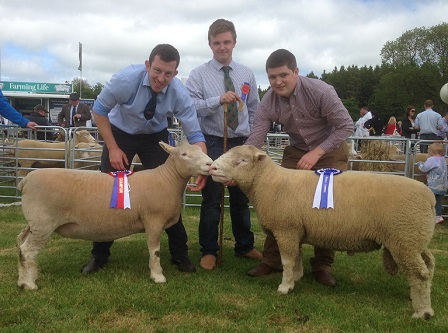 Ben Lamb with Champion & Reserve Champion assisted by Samuel Caldwell & Judge, Robert Coulter