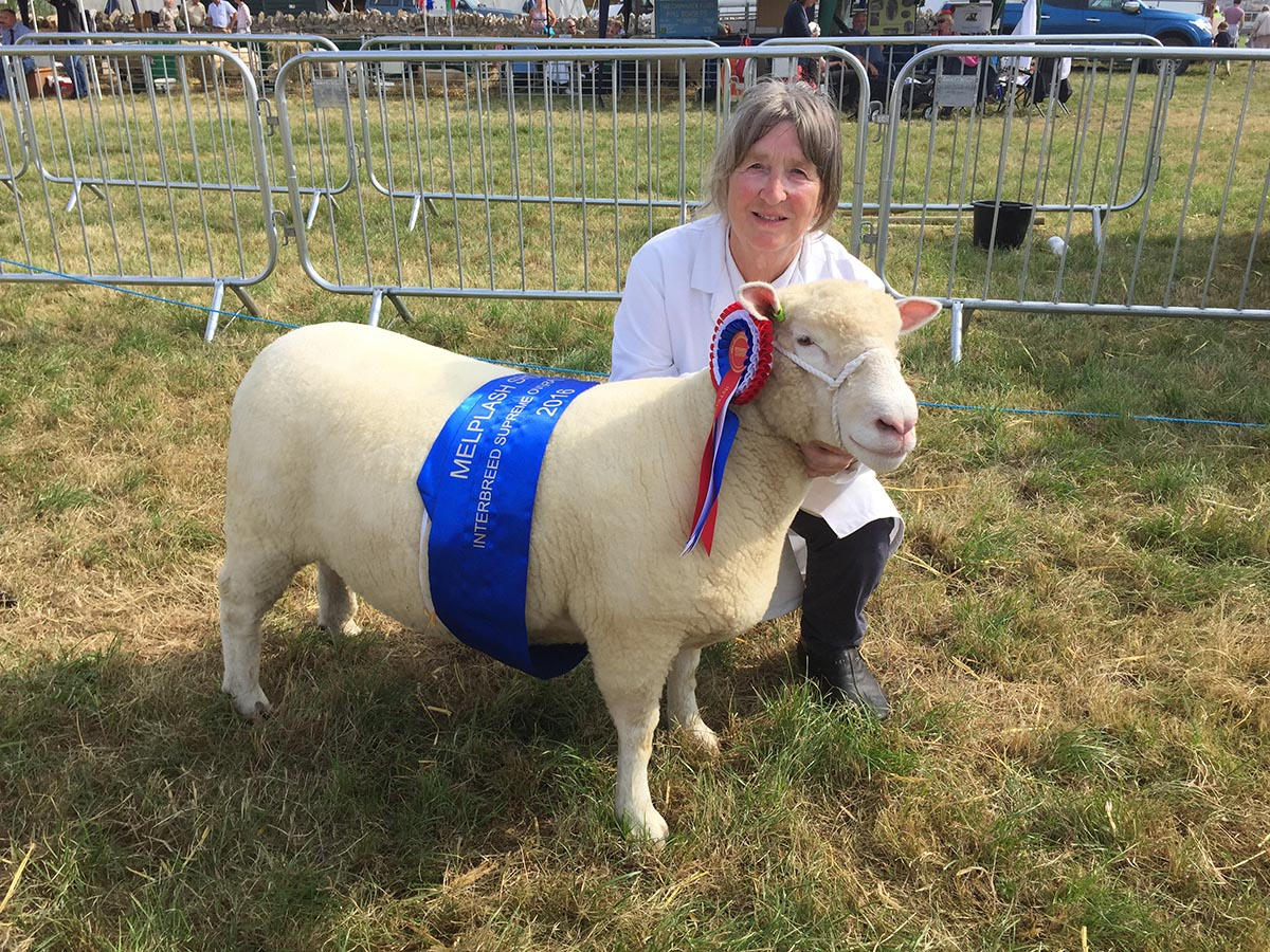 Sue Elsworth with the Interbreed Champion