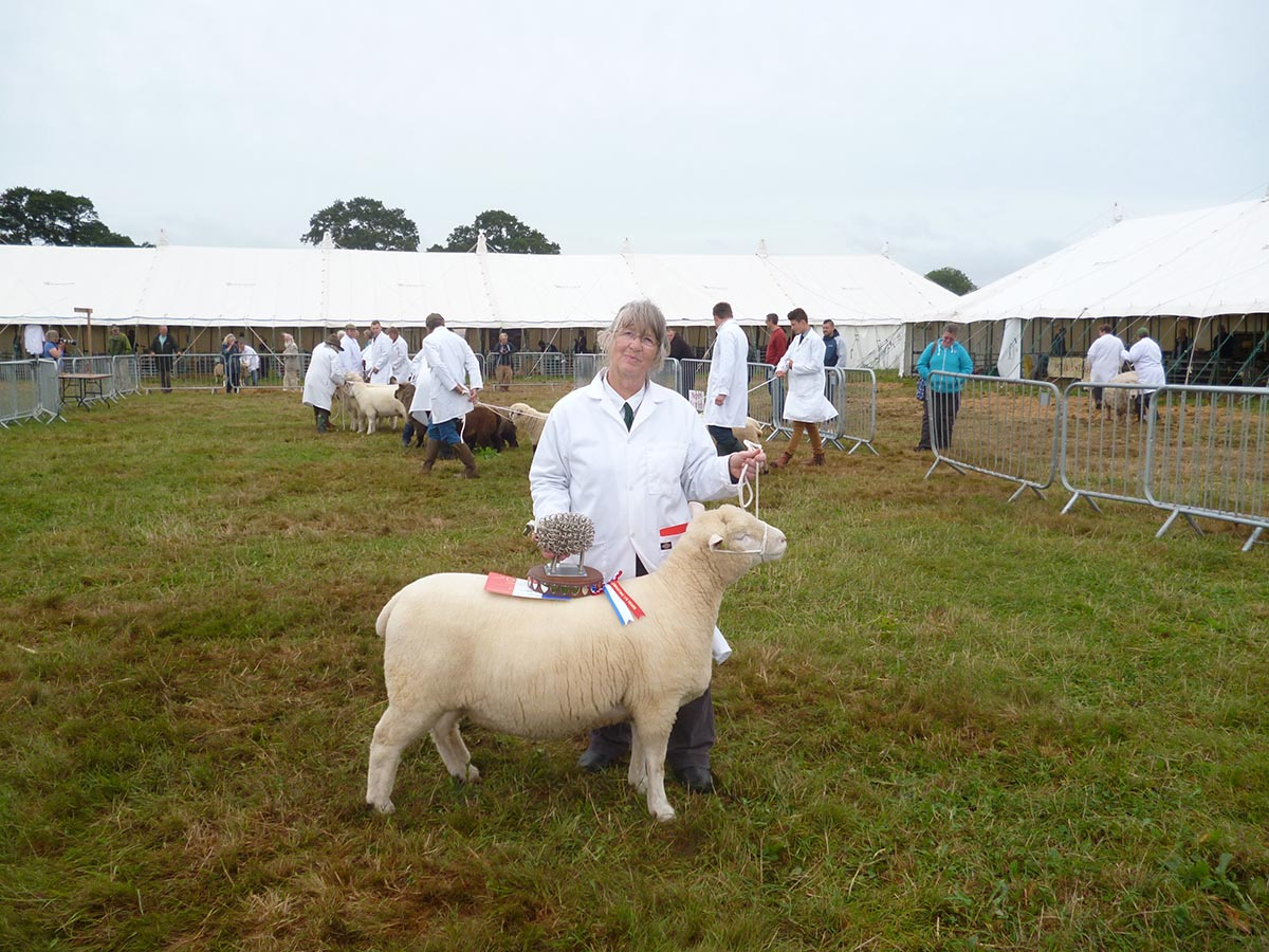 Sue Elsworth with the Overall Champion Wool on the Hoof Exhibit.