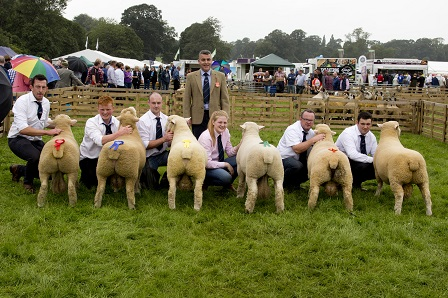 Ram lamb class, final placings from left to right with Judge James Royan