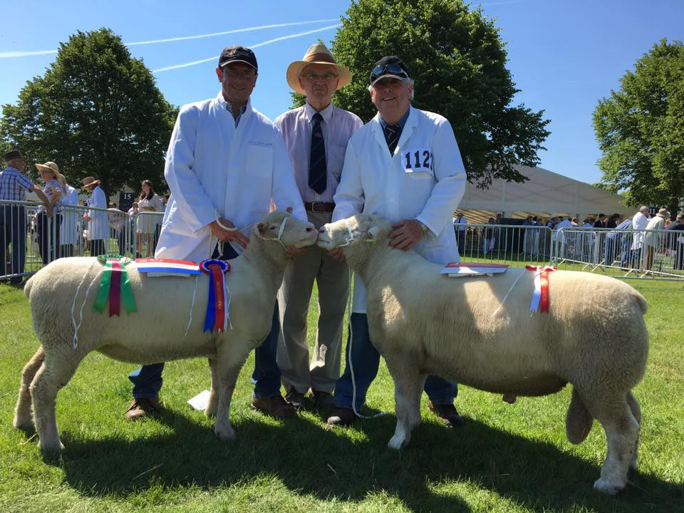 Iolo Davies (left), Judge, Richard Hole (centre) and Rowland Davies (right) with the Champion and Reserve Champion