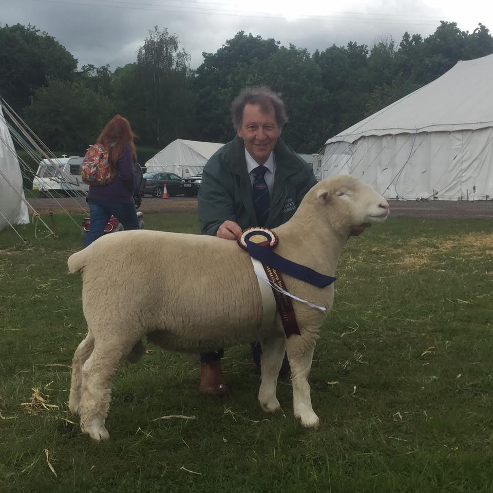 David Rossiter with the Huish Flock's Interbreed Ram Lamb Champion