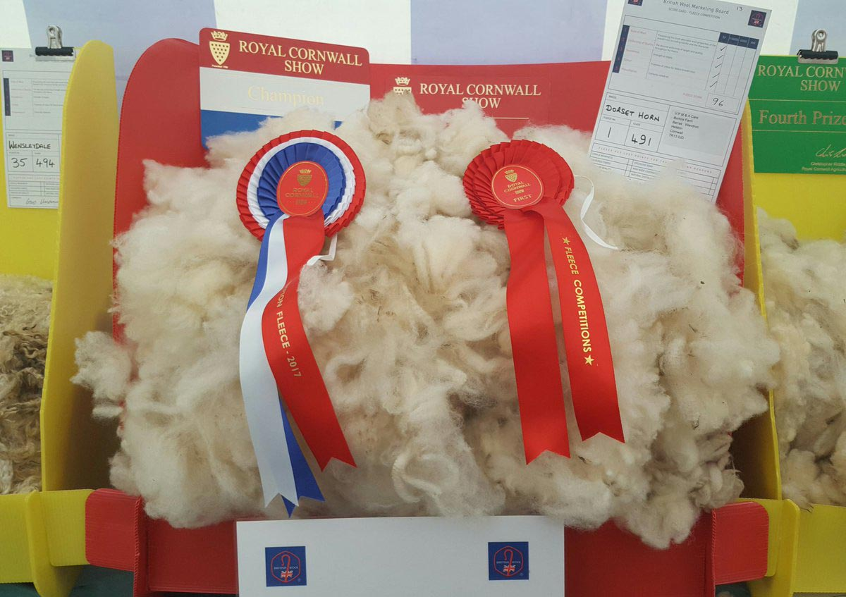 Overall Champion Fleece: V P, M & A Care