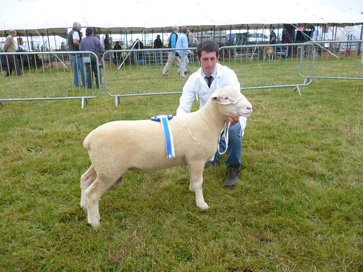 Phillip Brooks with the Reserve Champion