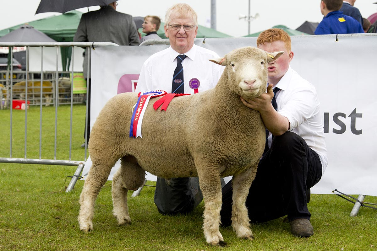 Shane Wilson and Graham Cubitt (Judge) with the Breed Champion