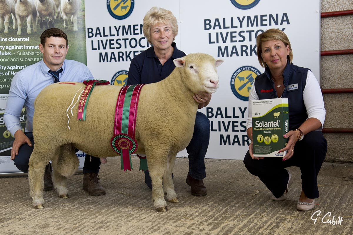 Joe Dufosee, judge, left, Mary Cubitt and Jacqueline Hamilton, sponsor, with the Supreme Champion