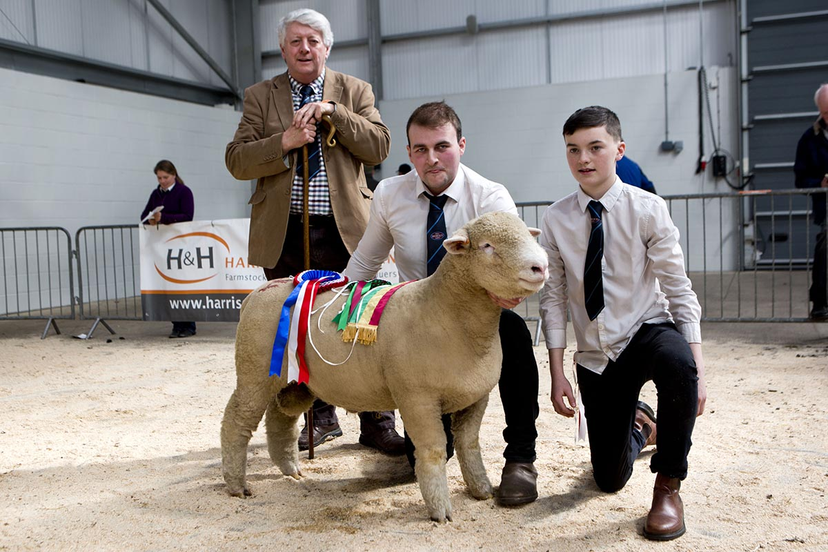 The Champion, Ballyhamage Braveheart, with from left Rowland Davies, Judge, James Robson, and Craig Robson