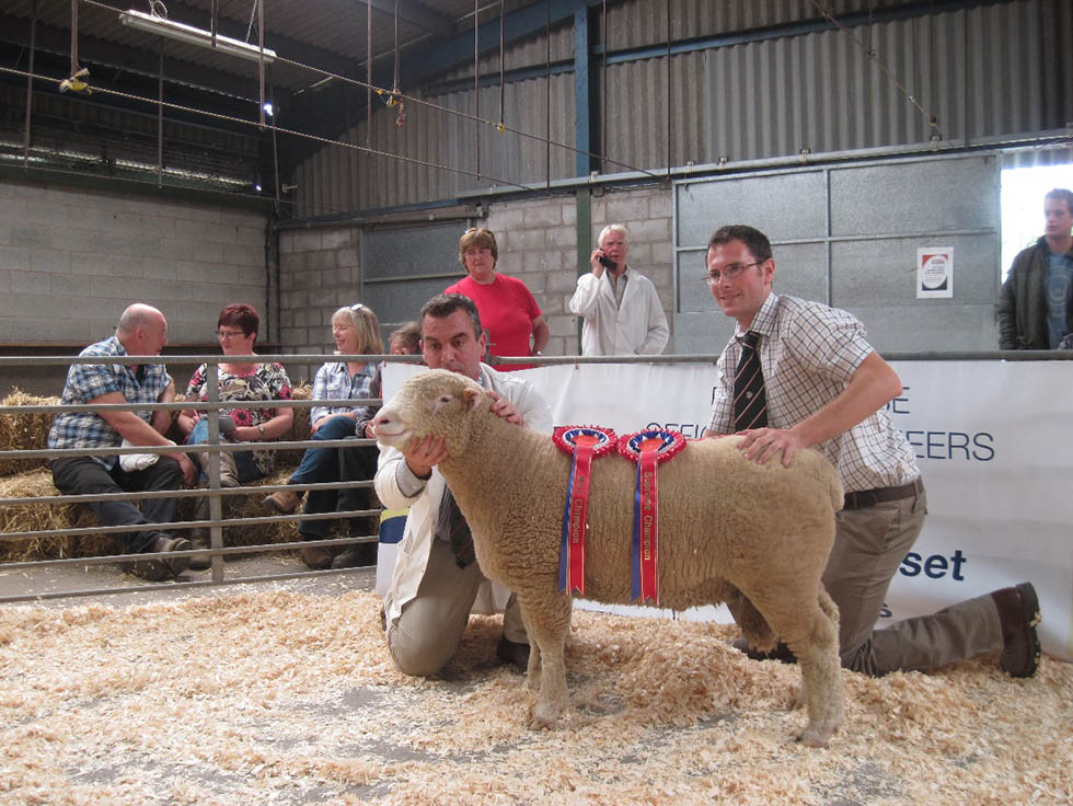 Champion with James Royan, & Judge, Iolo Davies