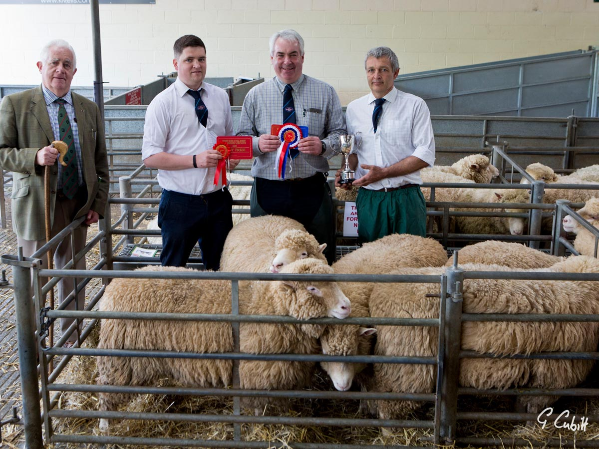 D J Thomas & Son's Champion pen of females, with from left David Thomas, Samuel Caldwell, Judge, Mark Thomas, and Nigel Wernham, Judge.