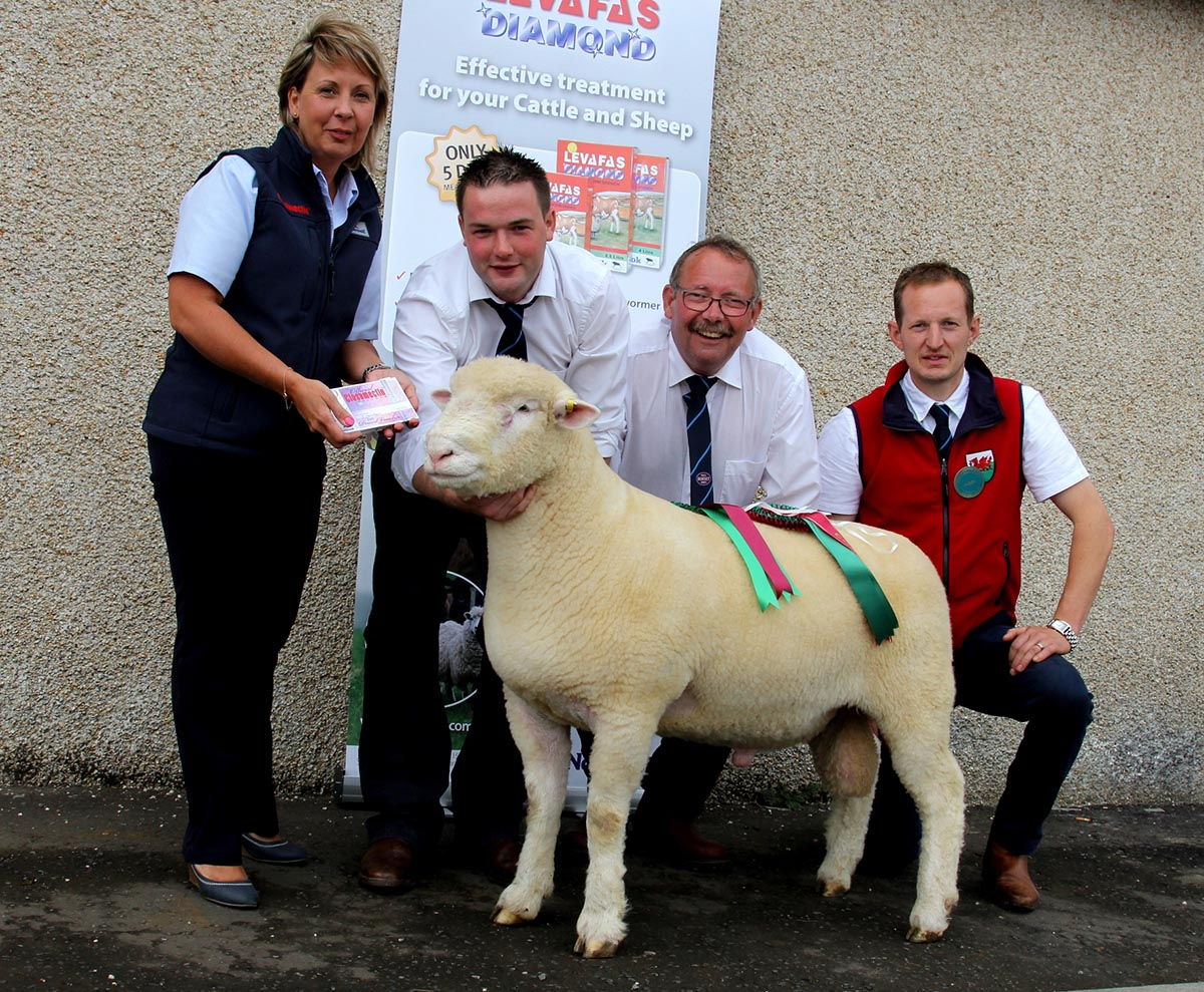 Supreme Champion with Jacqueline Hamilton (Norbrook representative), Andrew Kennedy (Handler), Michael Maybin (Breeder), and David Lewis (Judge)