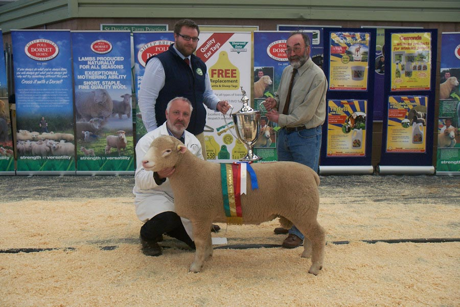 Champion Male Exhibit (Sponsored by Waitrose) Trevor Knox with Riverview Wasabi, W24,