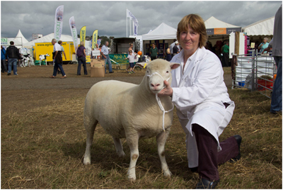 Sue Elsworth with the Breed Champion