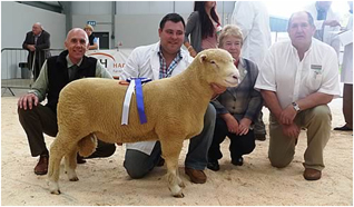 Thomas Wright with Reserve Champion