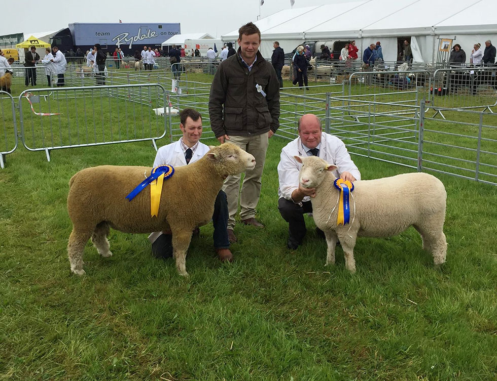 Matthew Care with Breed Champion, Judge, Ross Sizmur, and Nick Burrington with Reserve Champion