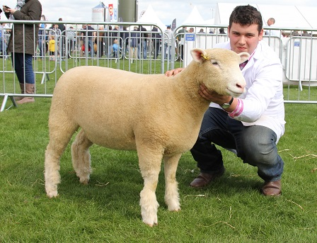 Andrew Knox with 1st prize ewe lamb